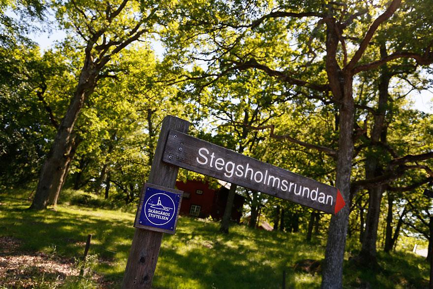 stegsholm-5